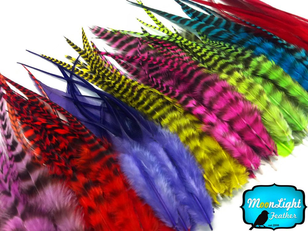 "Feathers Peacock Jewelry Hair Extension 3-6/"" Blue-Green Natural"