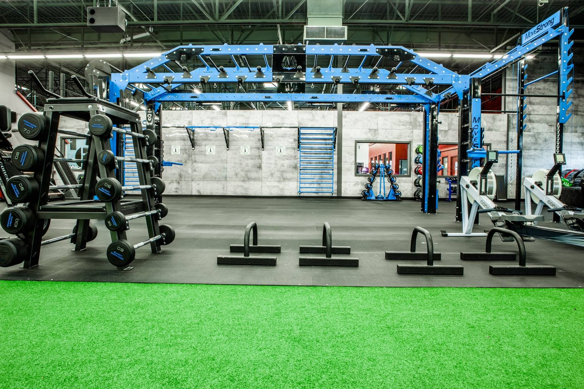 Movestrong Nova Xl Functional Training Station With Arch Monkey Bar Bridge Functional Fitness And Ninj Functional Training No Equipment Workout Back Exercises