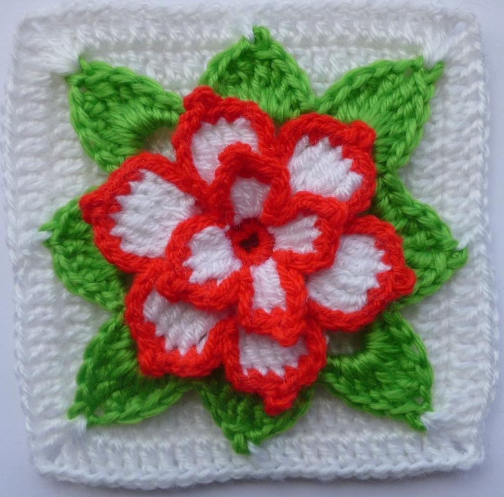 Poinsettia in square ~ free pattern