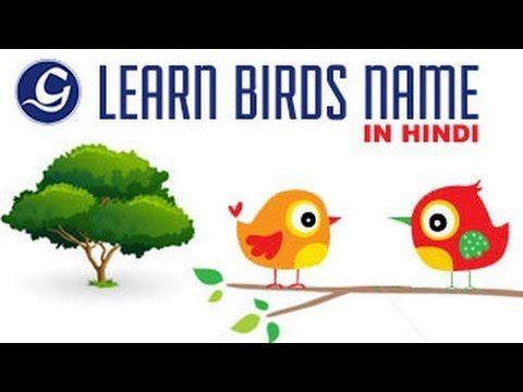 Learn Birds Name In Hindi Toddler Activities Hindi Video Hindi