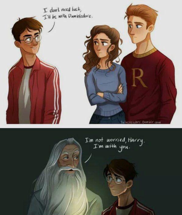 Harry And Dumbledore Harry Potter Art Harry Potter Harry