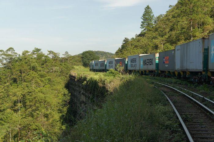 Foto de Travessia Parelheiros-Itanhaém - Trilha do Rio Branquinho
