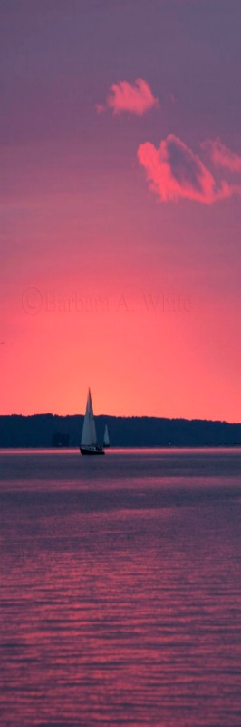 sailing into a pink sunset by Barbara A. White on Flickr....Cape Cod, MA