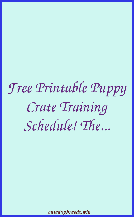 Free Printable Puppy Crate Training Schedule The Best Solution To