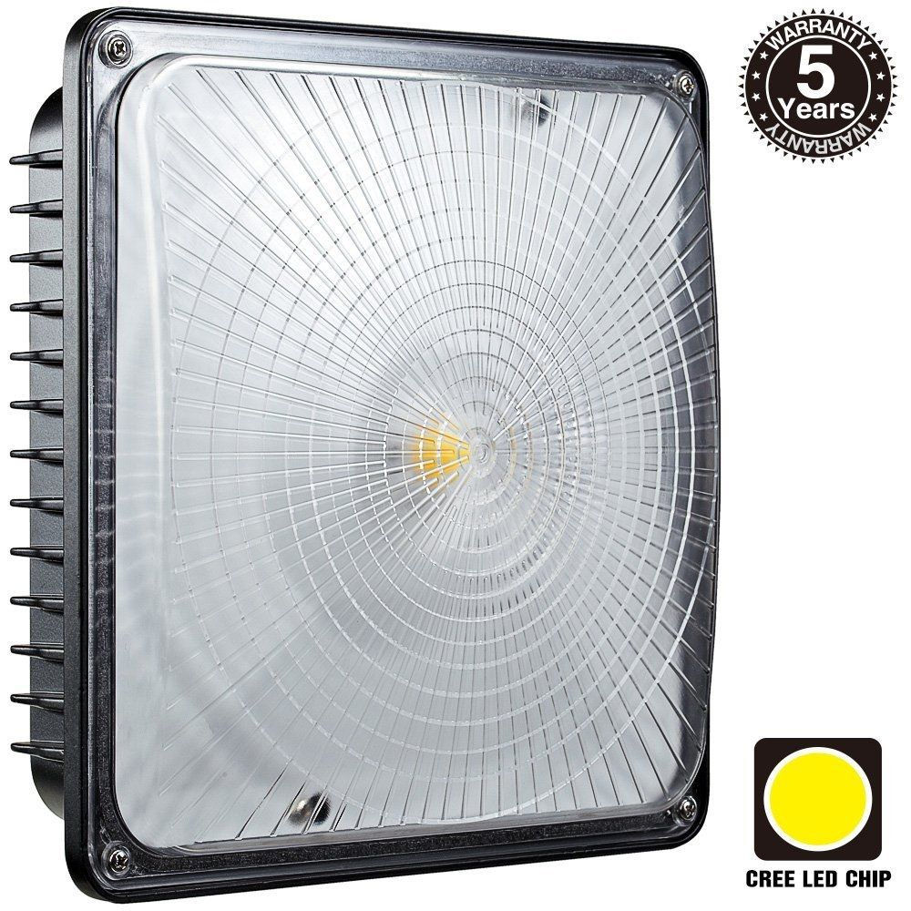 Residential Garage Led Lights: REALLY BRIGHT LED CANOPY LIGHT, PERFECT FOR GARAGES