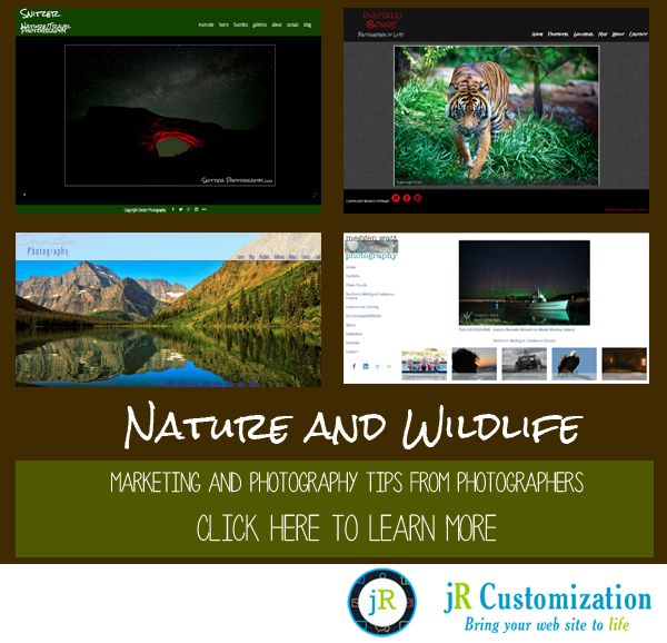 #photography #tips #marketing - #Nature and #Wildlife photography tips.  Read more at http://www.jrcustomization.com