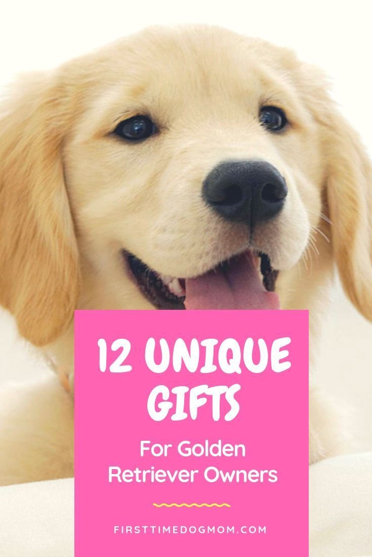 Gifts for golden retriever owners 12 unique etsy finds