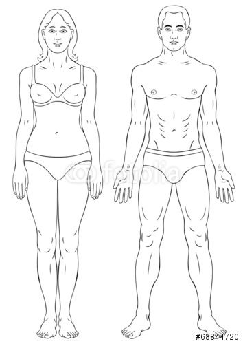 Vector Man And Woman Body Outline