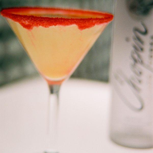 2 Chopin Vodka Shot Glasses New 2 oz