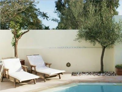 pool, lounge with olive trees.... love