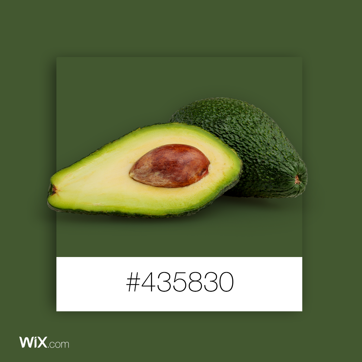 Color Palette Inspiration Green Avocado (With images