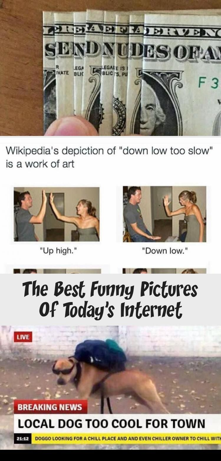 My Blog In 2020 Best Funny Pictures Funny Quotes Funny Pictures