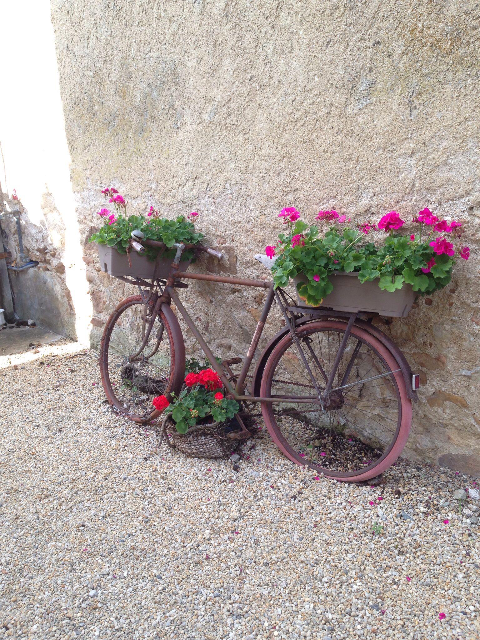 Blomstercykel