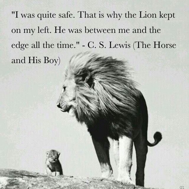 009 C.S. Lewis The Horse and His Boy…The Chronicles of