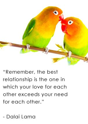 Genial Love Bird Quotes