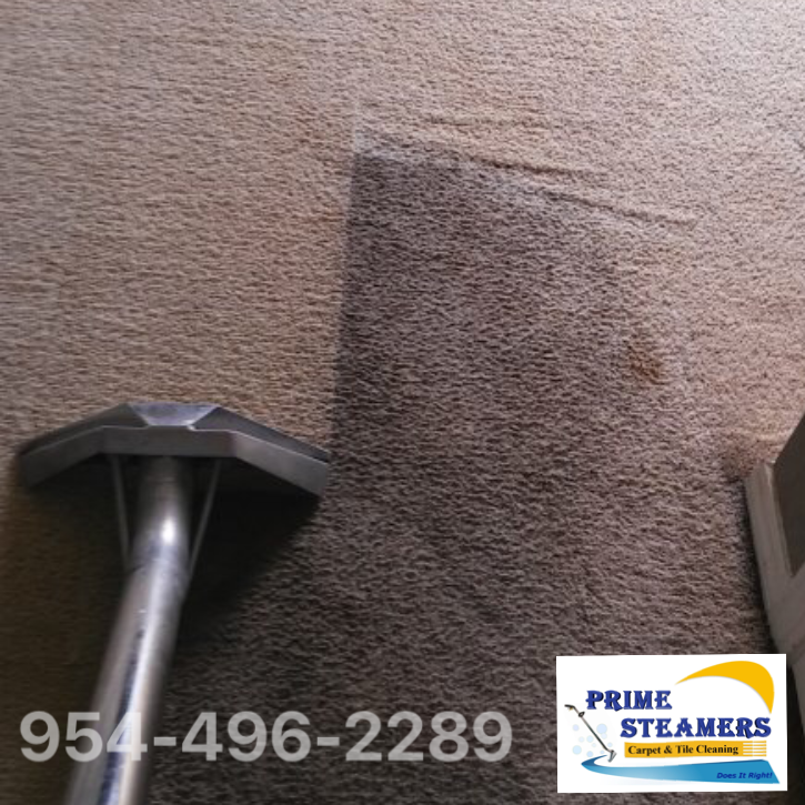 Best Carpet Cleaning Steam Cleaning And You Area Call Us Prime Steamers 954 496 2289 Www Theprimecleaning Co Carpet Cleaning Hacks Best Carpet Coral Springs