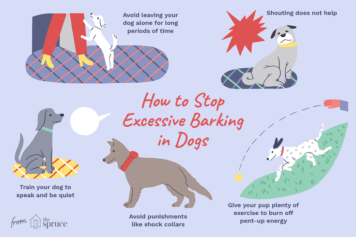 Learn How To Get Your Dog To Stop Barking So Much Your Dog Dogs Training Your Dog