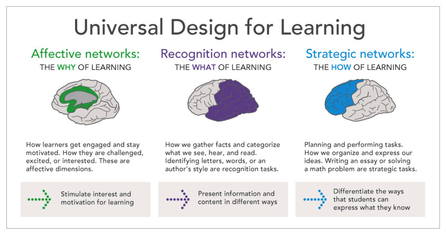 Udl Resources Udl And Technology Putting It Together