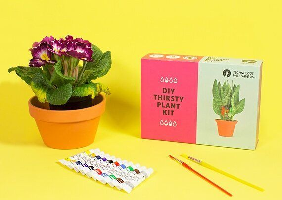 Have you spotted our latest gift box? Get everything you need to get your plant thirsty plant ready; plant pot seeds and paints to decorate your plant pot alongside your DIY Thirsty Plant Kit.  #futureinventors #thirstyplants by techwillsaveus