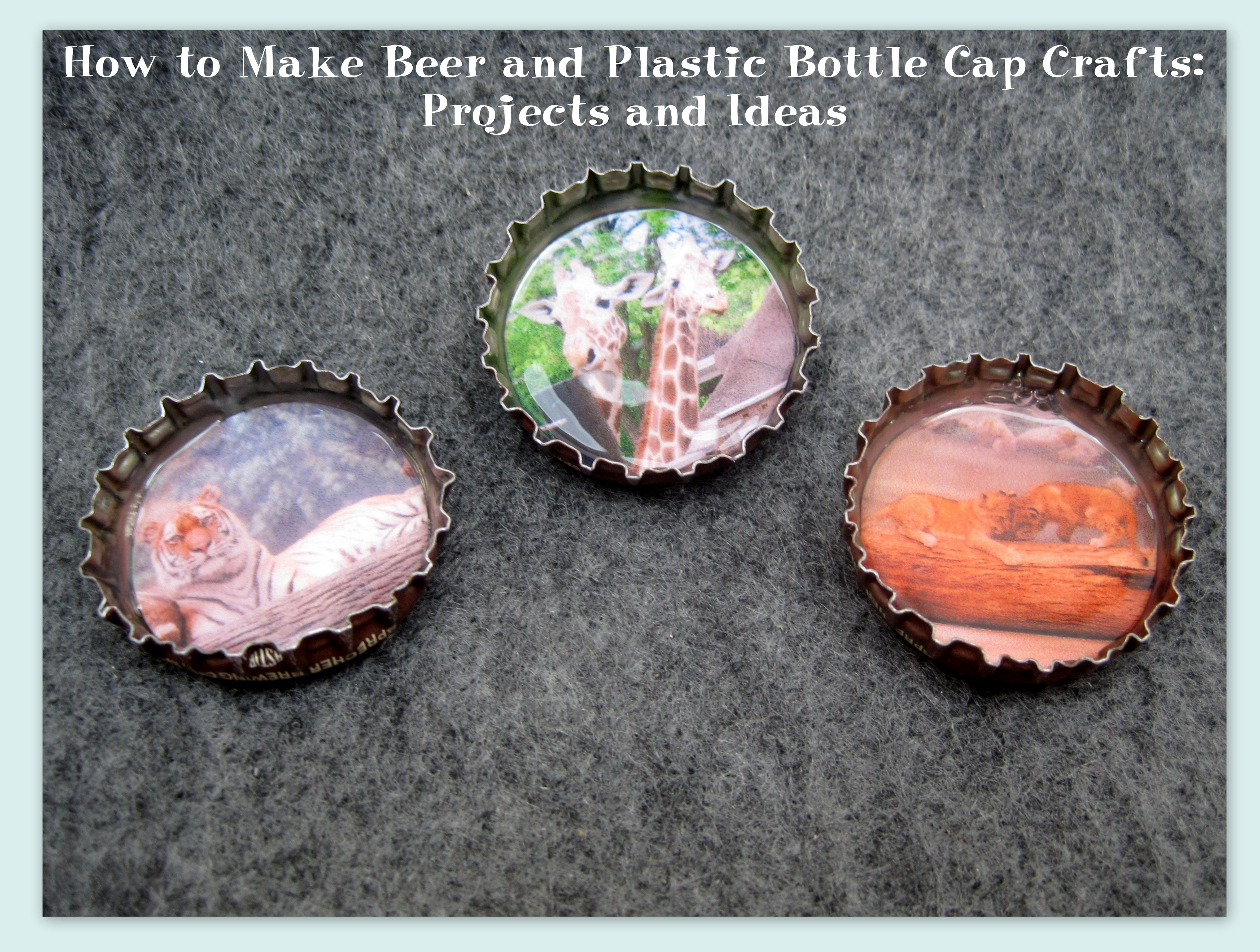 How to Make Beer and Plastic Bottle