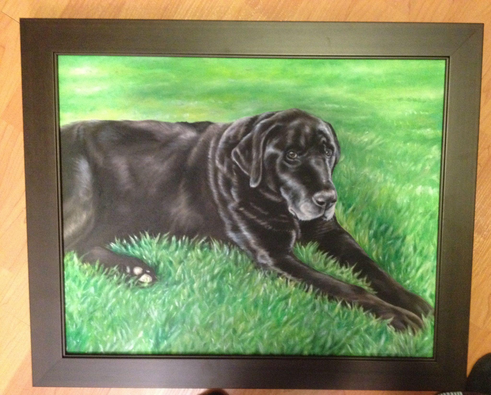 Portrait of Blackie