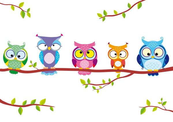 illustration different funny owls sitting on a branch