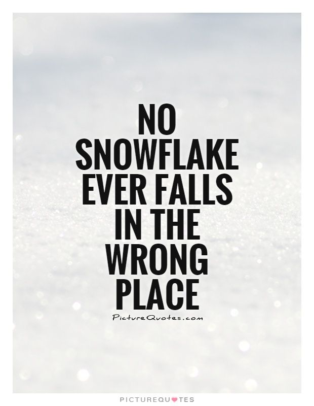 No Snowflake Ever Falls In The Wrong Place Snow Quotes On Impressive Snowflake Love Quotes