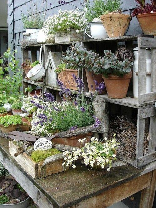 Aqui está uma boa ideia para revestir uma parede com caixotes de madeira que servirão de estante para vasos.