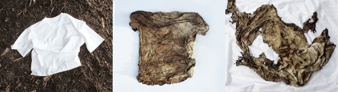 Trigema Change: Nachhaltige Kleidung in Karlsruhe - Lehrredaktion des WMK-Studiengangs