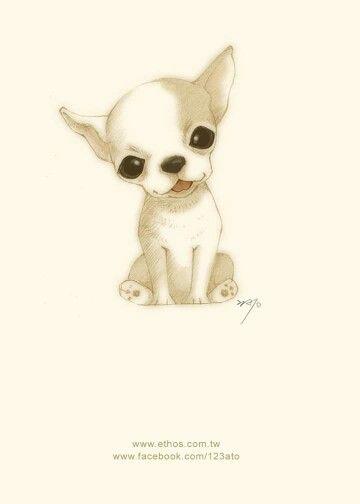 Chihuahua Bebe Chihuahua Drawing Chihuahua Art Cute Chihuahua