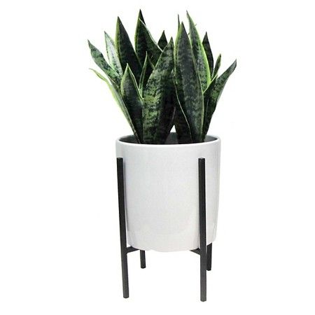 Artificial Plant in Stand Large - place on the ground ...