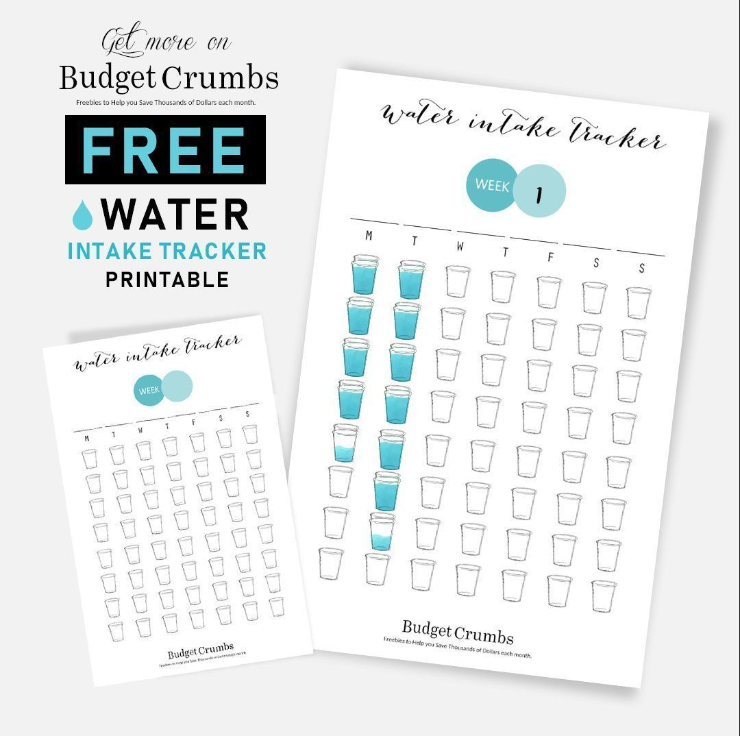Daily Water Tracker FREE Printable #Wattertracker #freeprintables #watertrackerbulletjournal