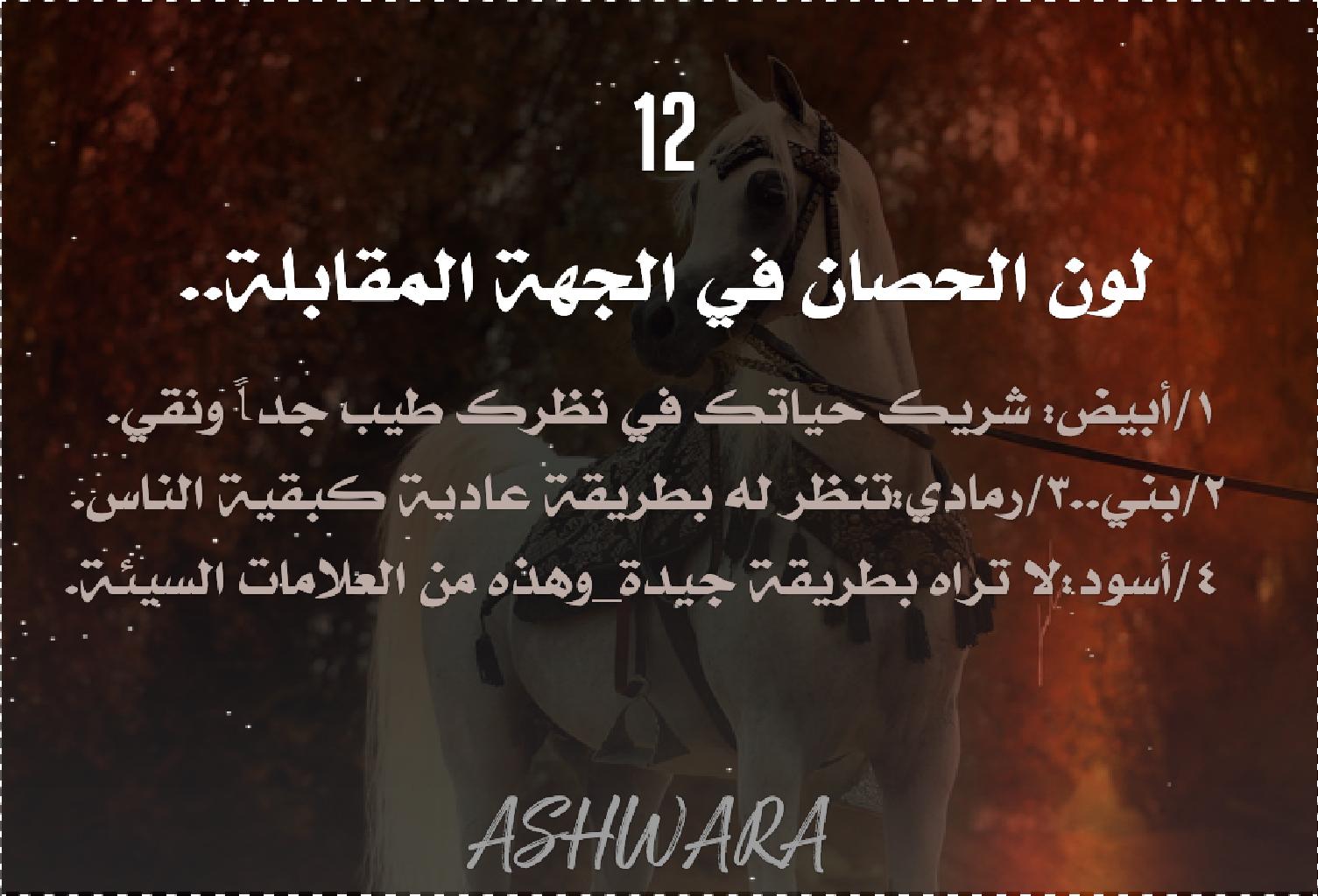 Pin By M Alhejazy On فعاليات حبحب