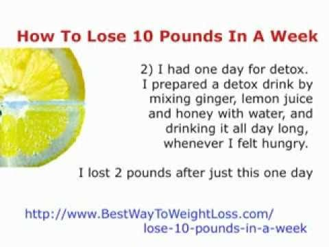 A lot of people seek a good lose 10 pounds in a week diet menu but they aren't sure how to lose weight exactly. Description from shelf3d.com. I searched for this on bing.com/images