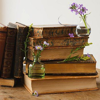 Flowers in Seaglass & Antique Books
