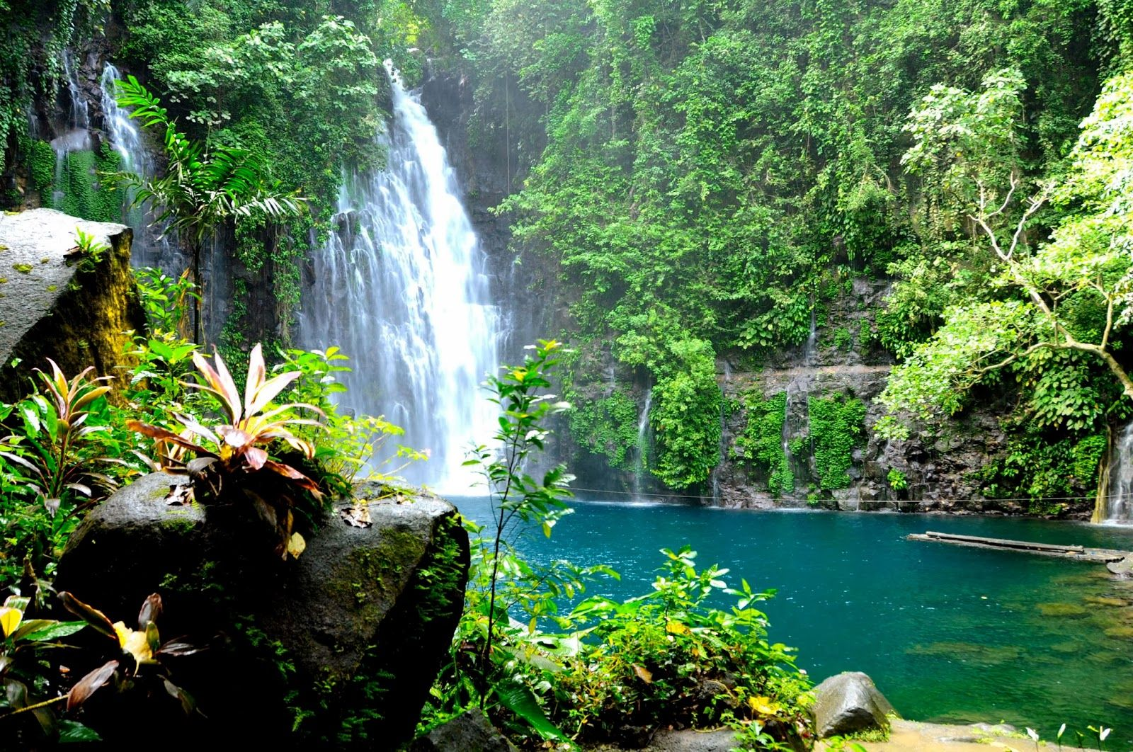 Tinago Falls Philippines Most Beautiful Places Places To Visit Pinterest Philippines
