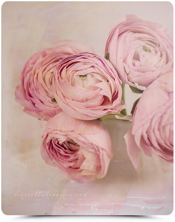 Henrietta Hassinen: Pink is beautiful