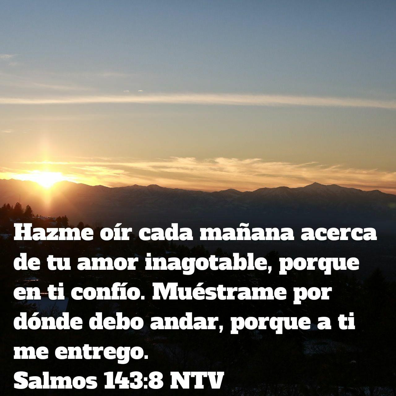 Cada mañana necesito su bendición para vivir mi #propósito | Frases ...