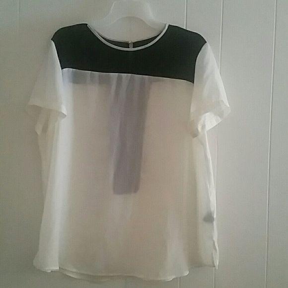Blouse Sheer  & black blouse Tops Blouses