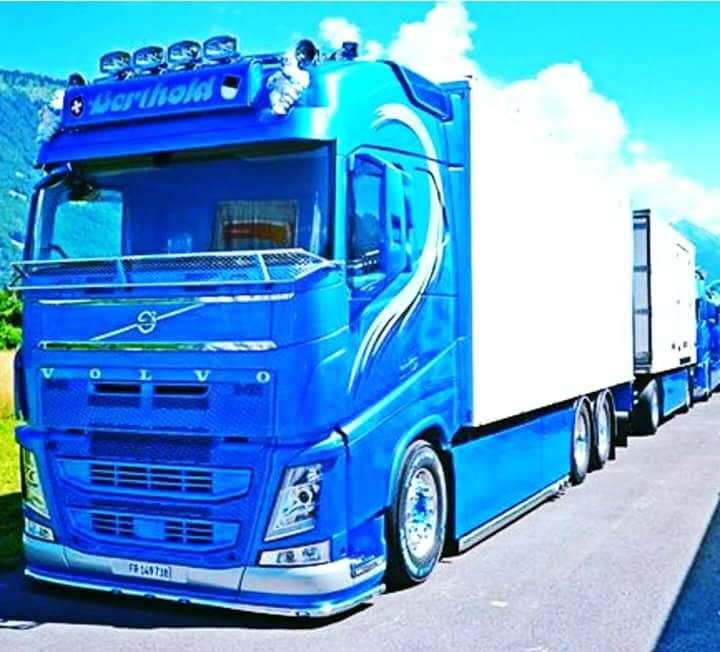 Pin By Reeferman_TMDC On Volvo FH4