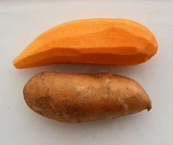 Homemade Dog Treats! sweet potato chews