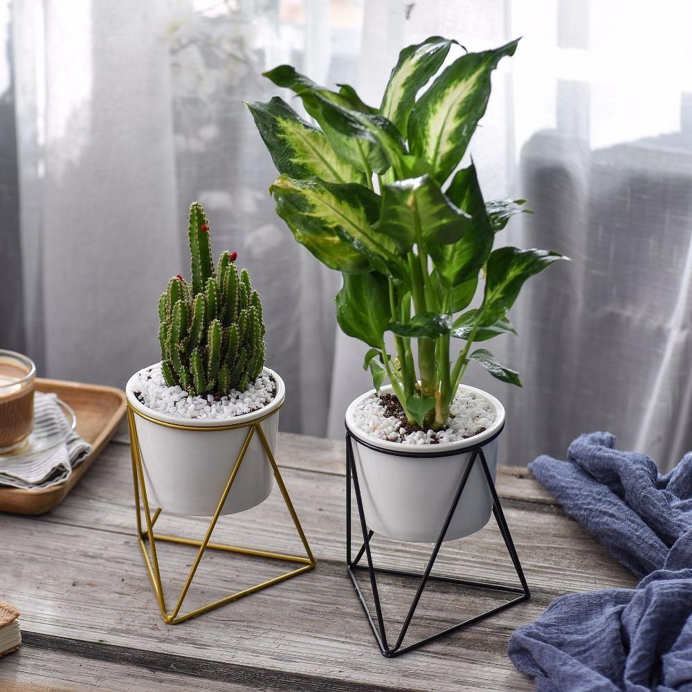 Style: Modern Finishing: Not Coated Type: Pot Trays Model ...