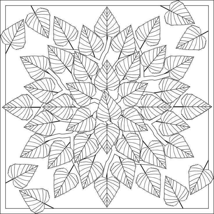 Birch Leaves Mandala Coloring PagesColoring
