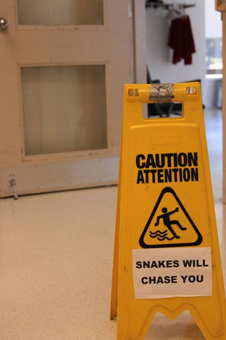 Caution Wet Floor Sign Snakes Sarcastic Humor Funny Signs Hilarious