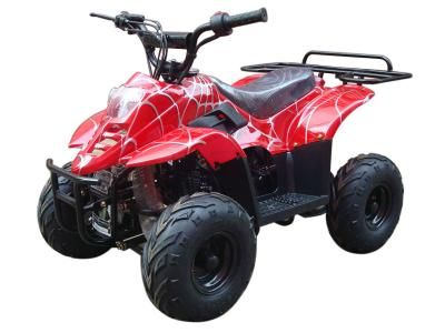 ATV001 110cc ATV Blow Out Sale, only $599! Yamaha Raptor