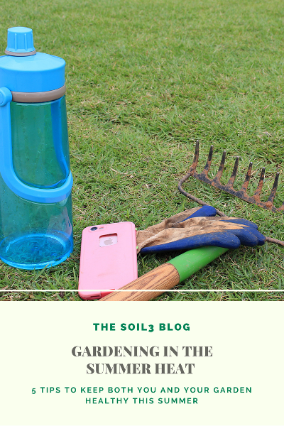 Tips to keep both you and your garden healthy in the