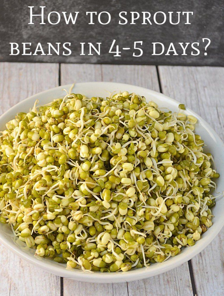 How to make Sprouts in a jar, Make sprouts in canning jar
