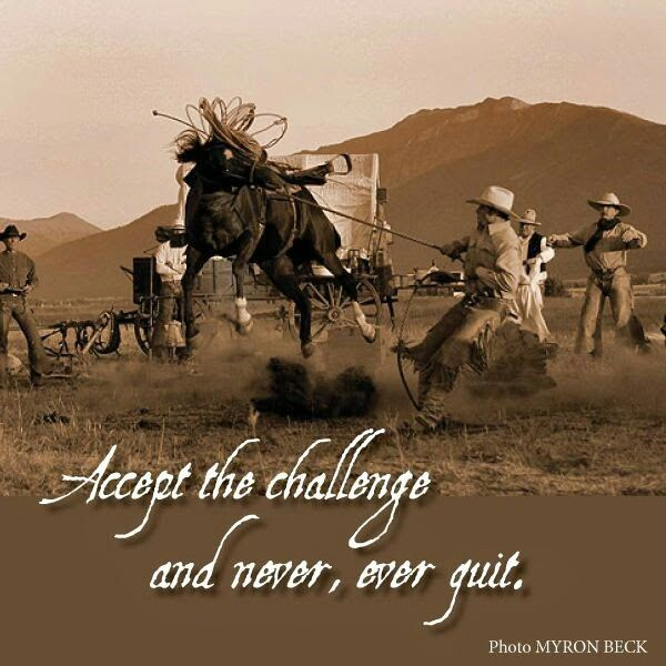 Never Give Up Cowboy Quotes Inspirational Horse Quotes Rodeo Quotes