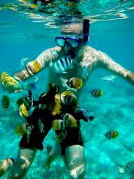 amazing honeymoon on gili trawangan lombok snorkling