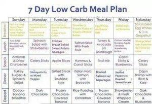 best free diet program